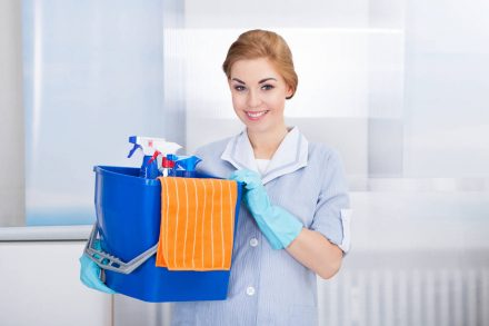 Commercial and Domestic Cleaning Businesses